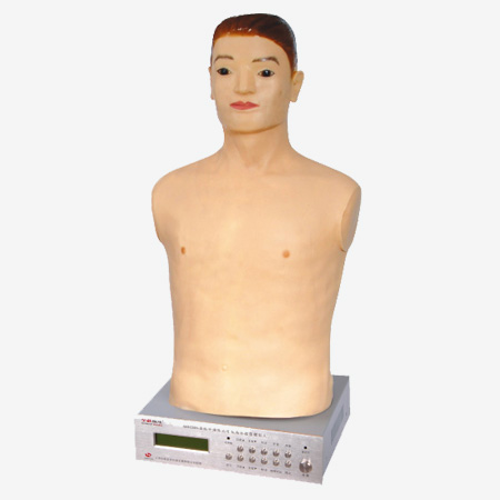 0001259_gdz990_auscultation_palaption_manikin