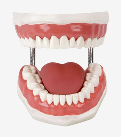 0001450_gdh11-dental-care-simulator